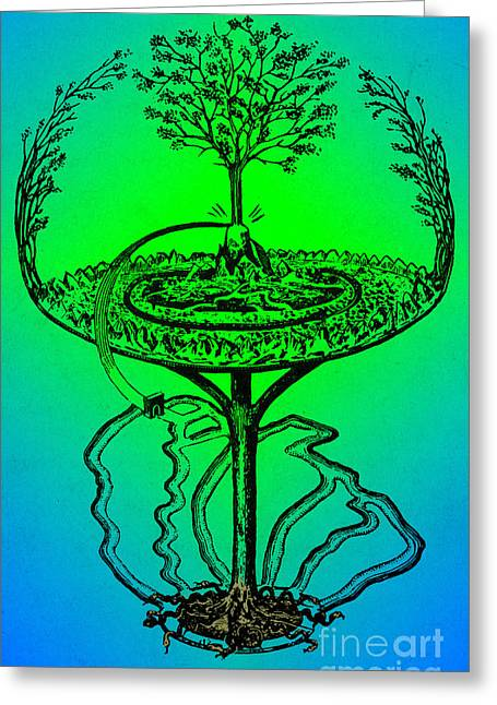 Yggdrasil Greeting Cards - Yggdrasil From Norse Mythology Greeting Card by Photo Researchers