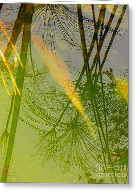 Water Garden Greeting Cards - Yin Greeting Card by Robert Hooper