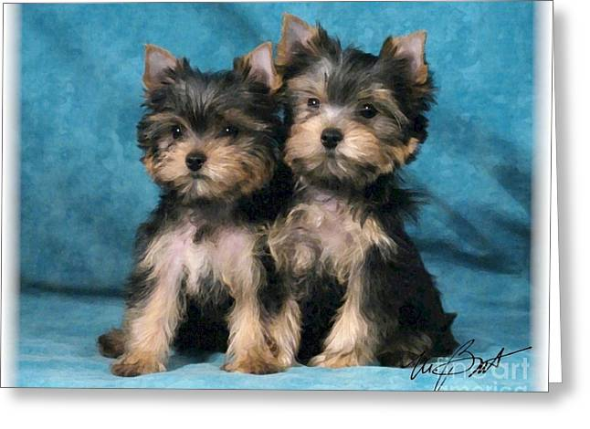 Yorkshire Terrier Pups 2 Greeting Card by Maxine Bochnia