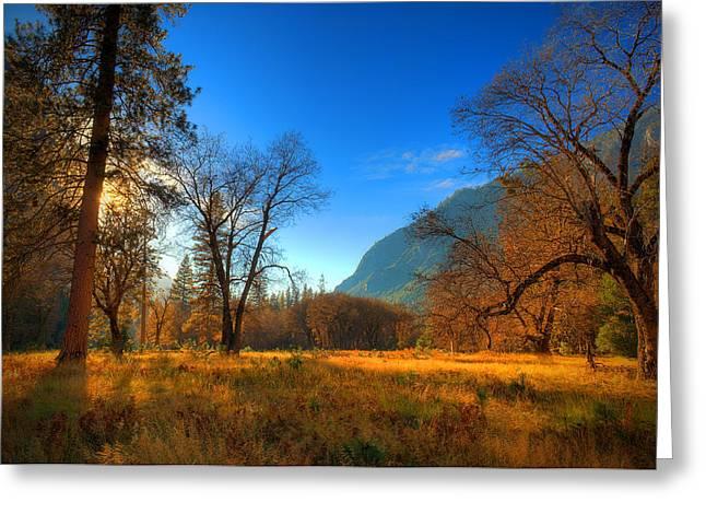 Yosemite National Park Greeting Card by Eyal Nahmias