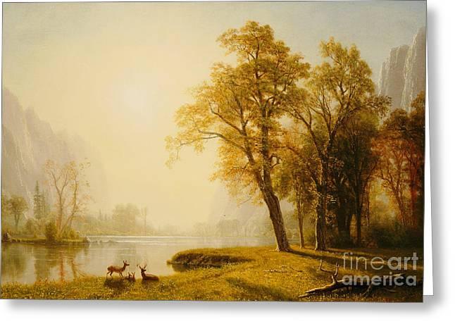 Tree Leaf On Water Paintings Greeting Cards - Yosemite Valley Greeting Card by Albert Bierstadt