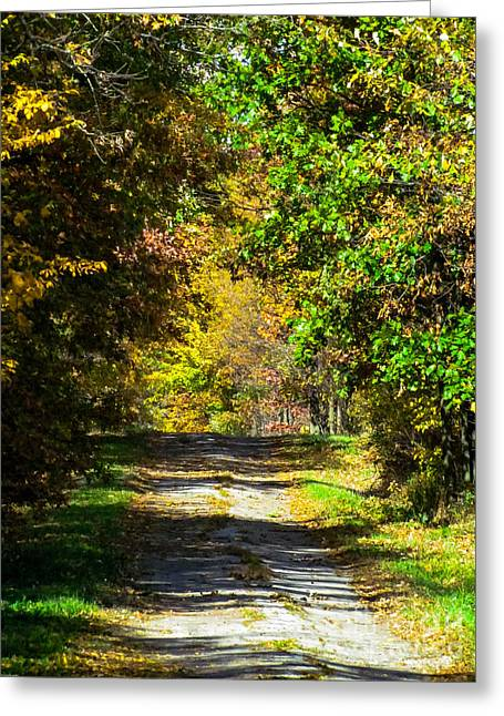 Fall Colors Greeting Cards - You Brighten My Day Greeting Card by Alisha Greer