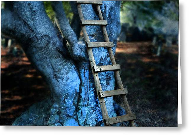 Young Woman Climbing a Tree Greeting Card by Jill Battaglia