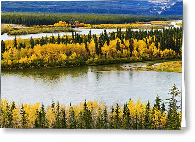 Yukon River Greeting Cards - Yukon River And Fall Colours Greeting Card by Yves Marcoux