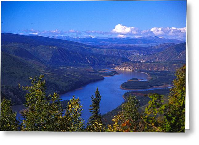 People In Autumn Greeting Cards - Yukon River In Fall Colors Greeting Card by Nick Norman