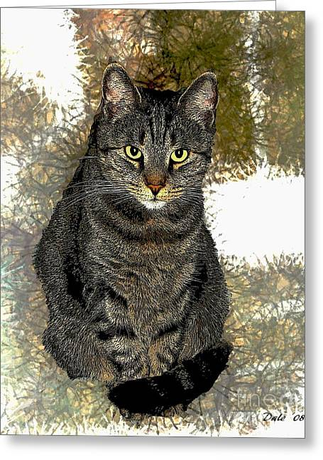 Photo Of Cat Greeting Cards - Zachary Greeting Card by Dale   Ford