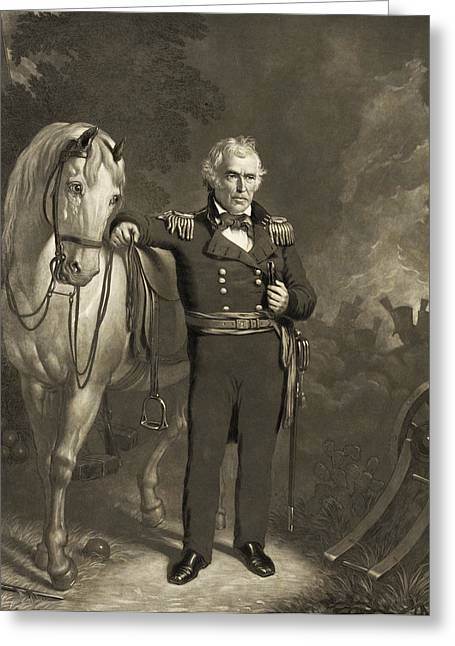 American Politician Greeting Cards - Zachary Taylor - President of the United States Greeting Card by International  Images