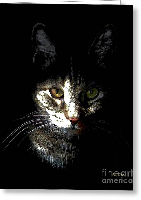 Pictures Of Cats Greeting Cards - Zack in Shadows Greeting Card by Dale   Ford