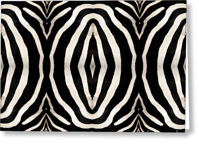 Zebra Hide Greeting Card by Rose Santuci-Sofranko