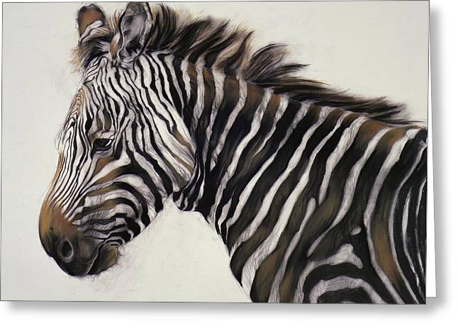 Zebra Greeting Cards - Zebra  Greeting Card by Odile Kidd