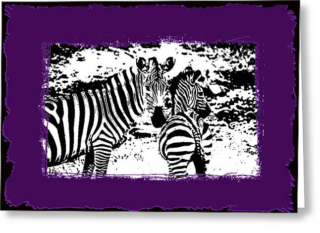 Zebra Greeting Cards Greeting Cards - Zebras Greeting Card by Tisha McGee