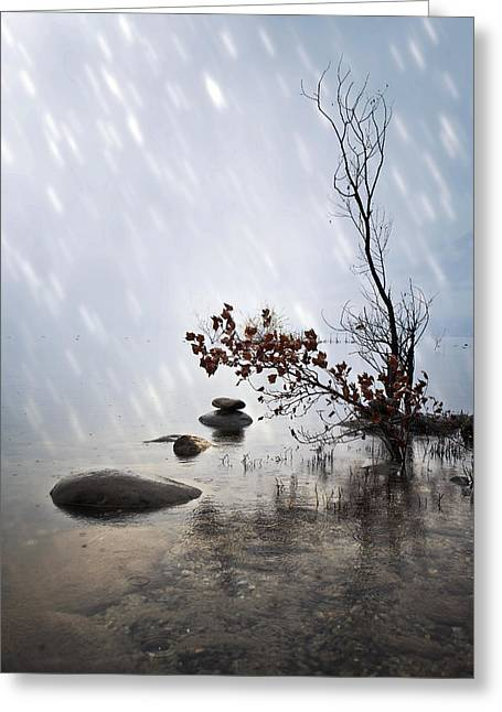 Lake Maggiore Greeting Cards - Zen stones Greeting Card by Joana Kruse