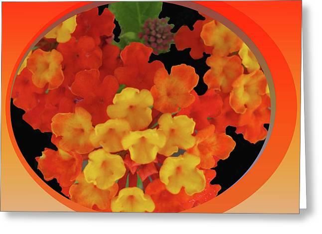 Spice Mixed Media Greeting Cards - Zesty Orange Spice Greeting Card by Debra     Vatalaro