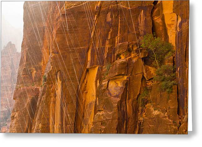 Weeping Greeting Cards - Zion Storm Greeting Card by Adam Pender