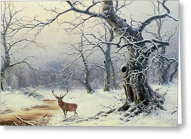 Snow White Greeting Cards -  A Stag in a Wooded Landscape  Greeting Card by Nils Hans Christiansen