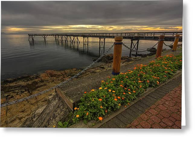 Bevan Fishing Pier - Sydney Bc Greeting Card by Mark Kiver