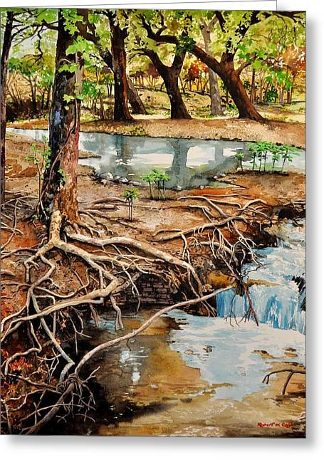 Tree Roots Paintings Greeting Cards -  Canyon Creek Greeting Card by Robert W Cook