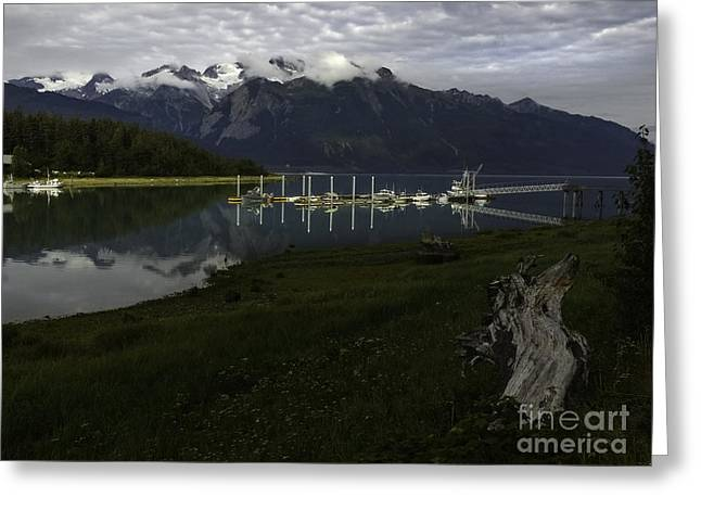 Sailboat Photos Greeting Cards -  Chilkat River Reflections Alaska Greeting Card by TAPS Photography