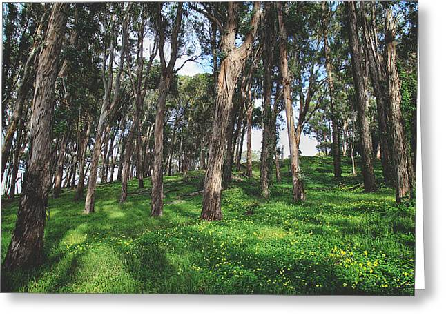 Eucalyptus Tree Greeting Cards -  Hand in Hand Well Go Greeting Card by Laurie Search