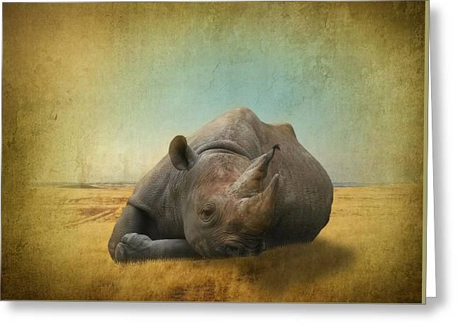 Photomanip Greeting Cards -  Lazy Days Greeting Card by Dave Godden