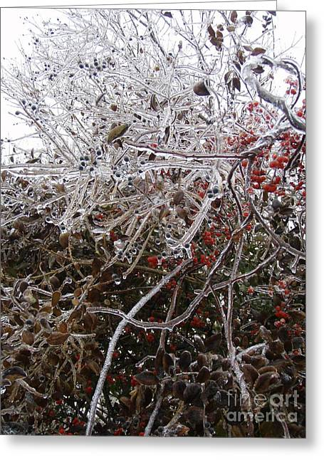 Ice Sculpture Greeting Cards -  Natures Dragon  Greeting Card by Kristine Nora