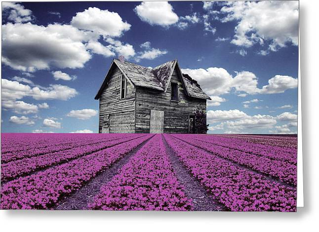 Pater Greeting Cards -  Old house with field Greeting Card by Mihaela Pater