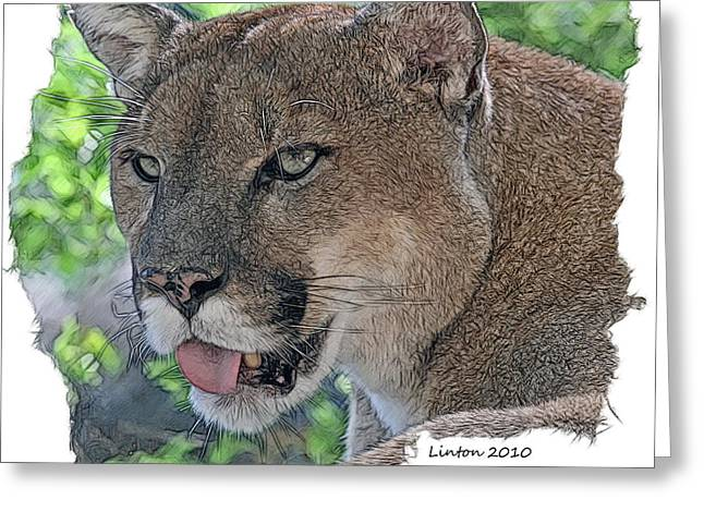 Panther 2 Greeting Card by Larry Linton