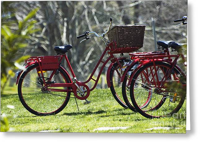 Hamptons Greeting Cards -  Red Bicycle in the Country Greeting Card by Anahi DeCanio