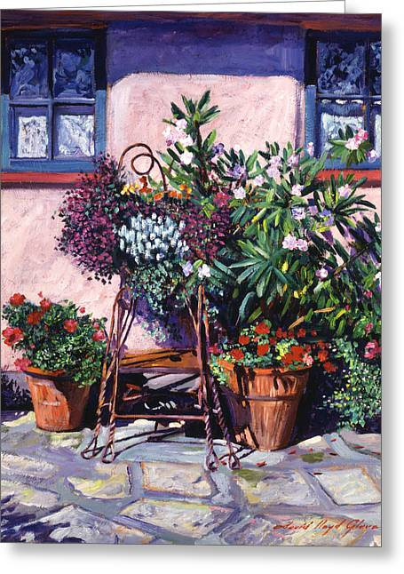Shadows And Flower Pots Greeting Card by David Lloyd Glover