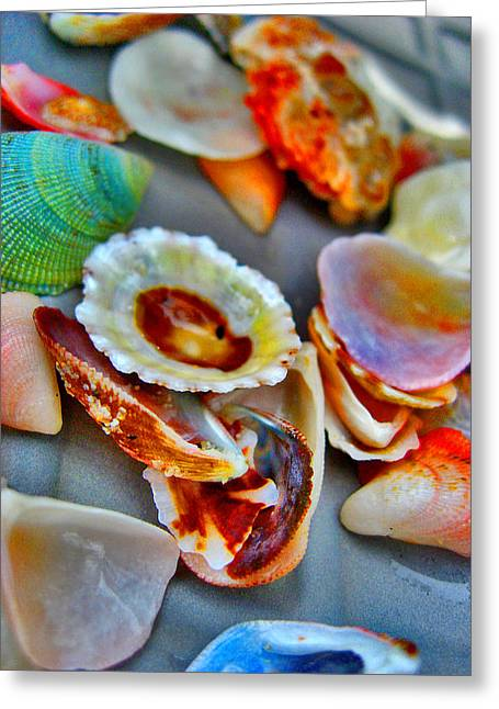 Shell Texture Greeting Cards -  Shell. Siam Texture. Greeting Card by Andy Za