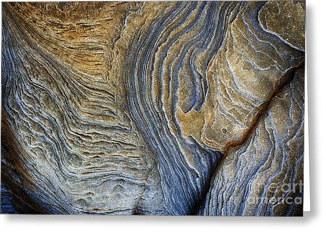 Geology Photographs Greeting Cards -  Sleeping Serpent  Greeting Card by Tim Gainey