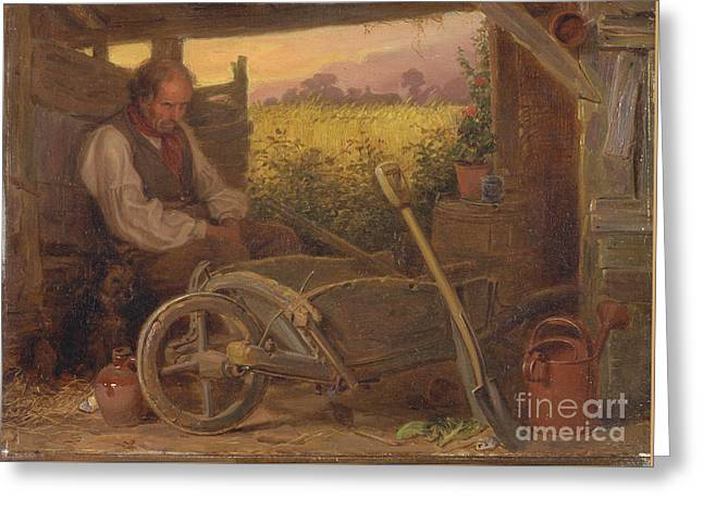 The Old Gardener Greeting Card by Celestial Images