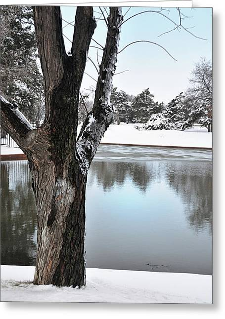 Snow Scene Landscape Greeting Cards -  The Sentinal Greeting Card by Betty LaRue