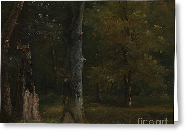 In 1812 Greeting Cards -  Trees in the Bois de Boulogne Greeting Card by Achille-Etna Michallon