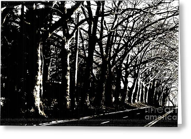 Tree Lines Mixed Media Greeting Cards - BW  Trees Silhouette on a Country road Greeting Card by ArtyZen Studios