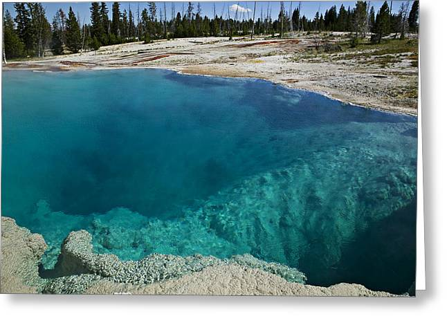 Geothermal Greeting Cards -   Turquoise hot springs Yellowstone Greeting Card by Garry Gay