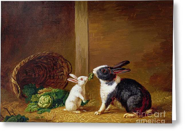 Basket Greeting Cards -  Two Rabbits Greeting Card by H Baert