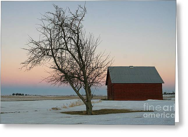 Snow Scene Landscape Greeting Cards -  Winter in Rural America Greeting Card by Paula Guttilla
