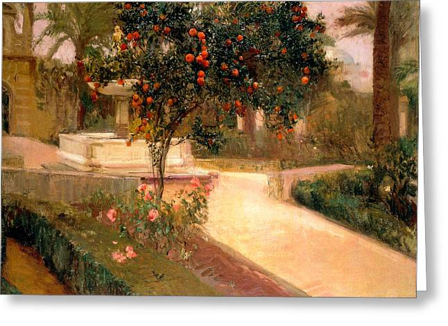 Fruit Tree Art Greeting Cards - Garden Alcazar Seville Greeting Card by Joaquin Sorolla
