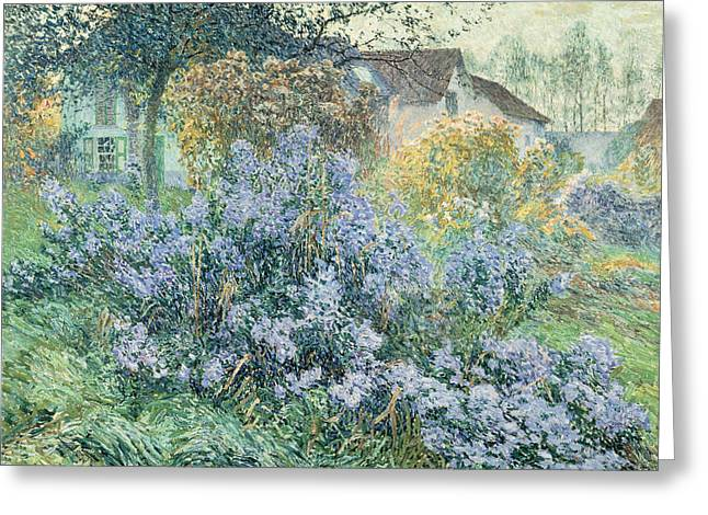 Aster Paintings Greeting Cards - The Asters Greeting Card by Emile Clause