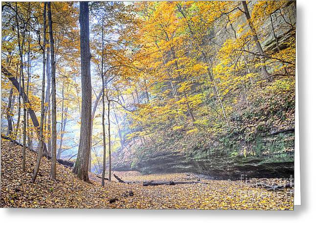 Starved Rock Park Greeting Cards - 0983 Starved Rock Colors Greeting Card by Steve Sturgill