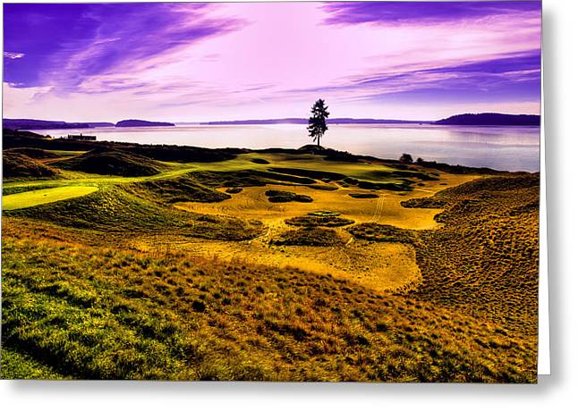 #15 At Chambers Bay Golf Course Greeting Card by David Patterson
