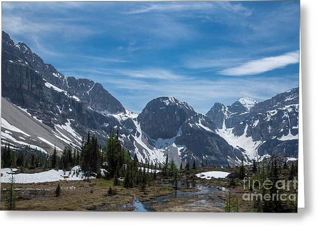 Canadian Pyrography Greeting Cards - Mountains #17 Greeting Card by Olga Photography
