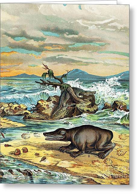 Schubert Greeting Cards - 1888 Giant Amphibian Of Triassic Coast Greeting Card by Paul D. Stewart