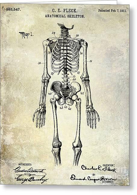 Medical Greeting Cards - 1911 Anatomical Skeleton Patent Greeting Card by Jon Neidert