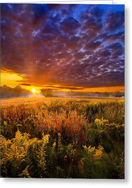 Sun Ray Greeting Cards - A Drifting Kiss Greeting Card by Phil Koch