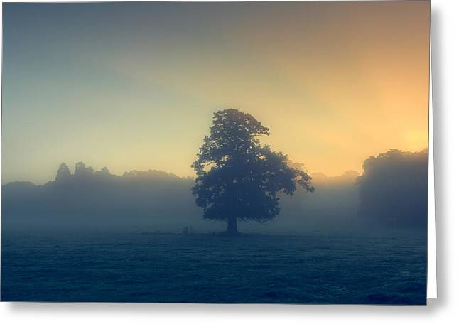 Haze Greeting Cards - A misty sunrise Greeting Card by Chris Fletcher