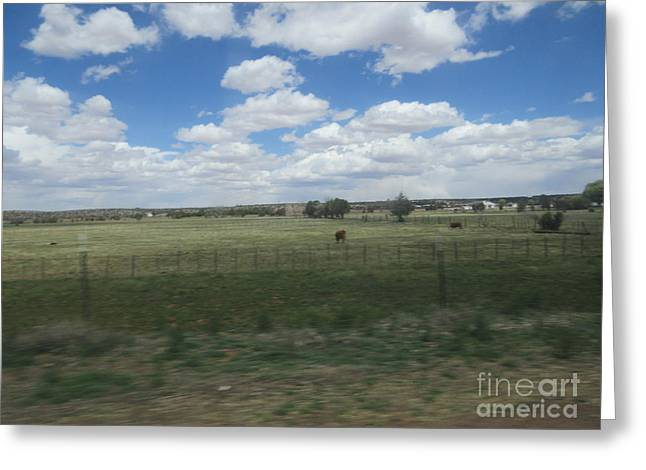 Pasture Scenes Mixed Media Greeting Cards - A Ranch Scene Greeting Card by Frederick Holiday
