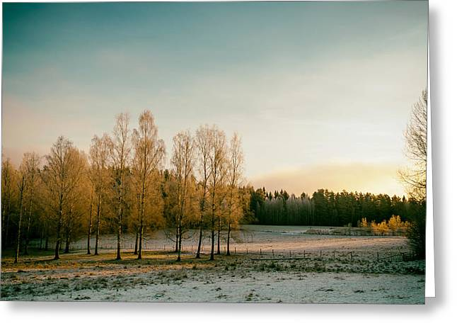Late Fall Season Greeting Cards - A Rural Sunset in Sweden Greeting Card by Niklas Rhose