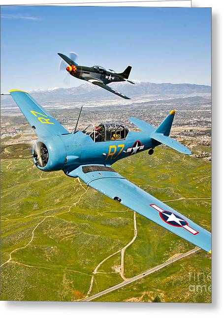 Military Airplanes Greeting Cards - A T-6 Texan And P-51d Mustang In Flight Greeting Card by Scott Germain